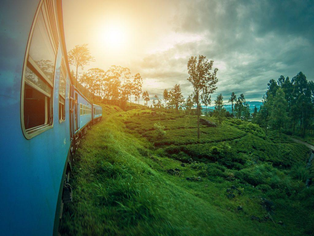 Jolie paysage du Sri Lanka