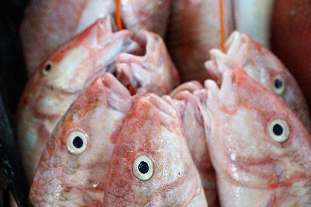 Manger du poisson frais aux Seychelles