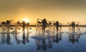 Récolte du sel au Vietnam